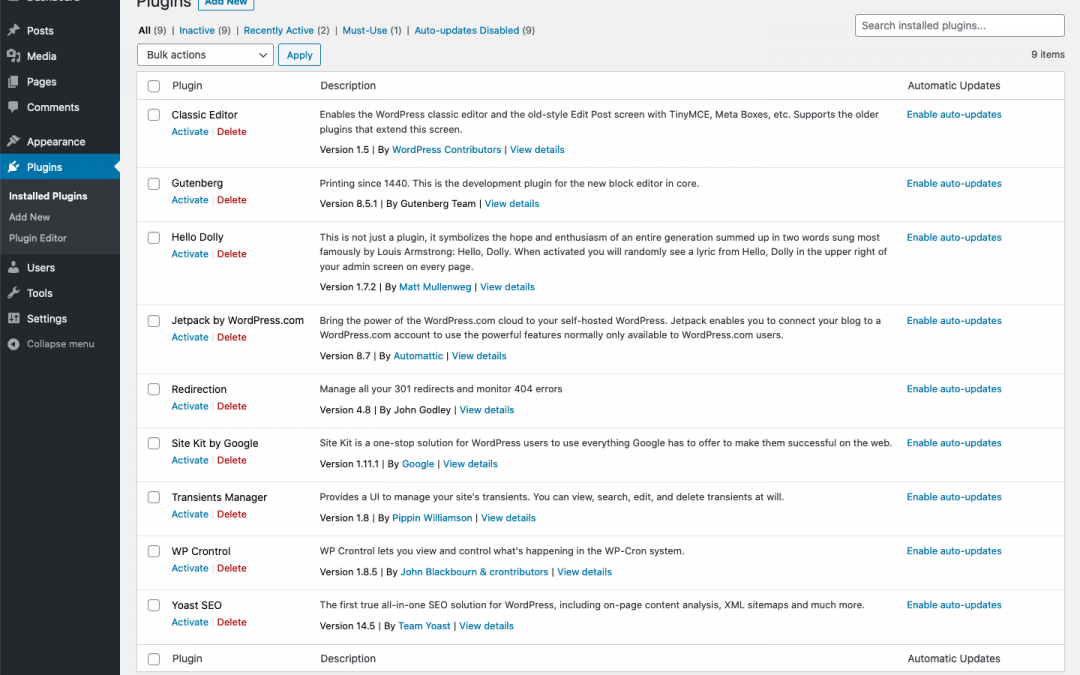 Easy Updates Manager and WordPress 5.5